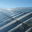 Teilseitenansicht Dachgewölbe Kristall-Palast